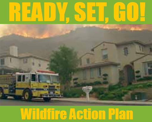 Wildfire Action Plan